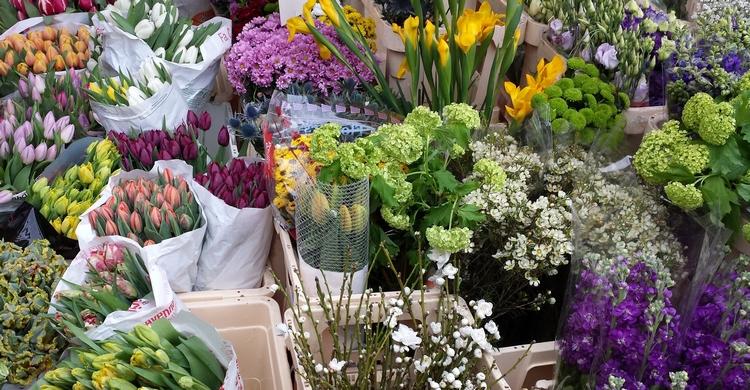 Come mantenere i fiori freschi più a lungo_3